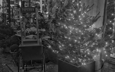 12+ Tipps für die Weihnachtsrede