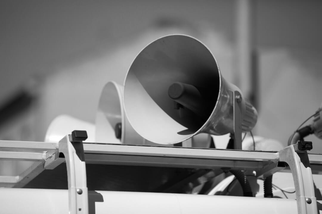 Die Stimme als Markenzeichen
