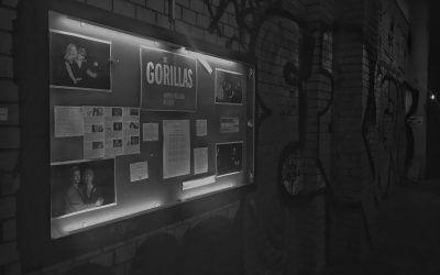 Gorillas und Gesichter die Geschichten erzählen