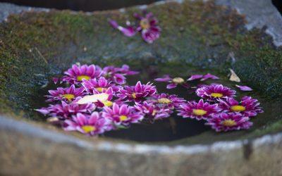 Das Glück deines Lebens hängt von der Beschaffenheit deiner Gedanken ab.  Marcus Aurelius