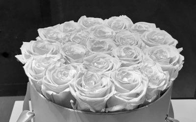 Das Schönste im Leben ist kostenlos. Das Zweitschönste ist ziemlich teuer. –Coco Chanel