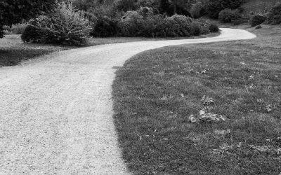 Der Weg zu allem Großen geht durch die Stille. Friedrich Wilhelm Nietzsche