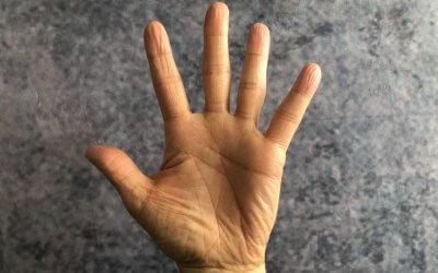 Handreichung: Fünf Finger für eine strukturierte Rede. 5-Finger-Redestruktur.