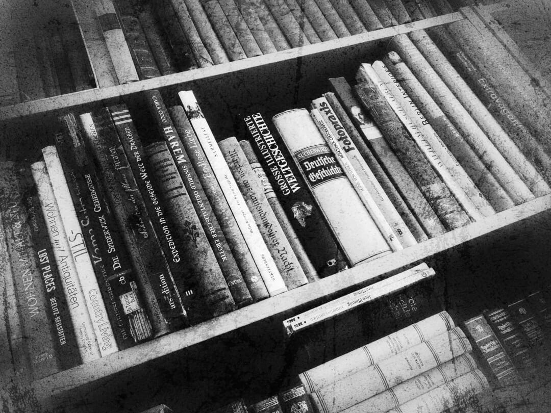 Bücher / Lesen